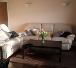 1 Spare Room For Rent in  Shooter's Hill South London